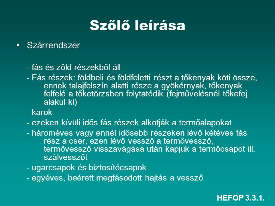 HEFOP 3.3.1. Szőlő leírása Szárrendszer - fás és zöld részekből áll - Fás részek: földbeli és földfeletti részt a tőkenyak köti össze, ennek talajfels
