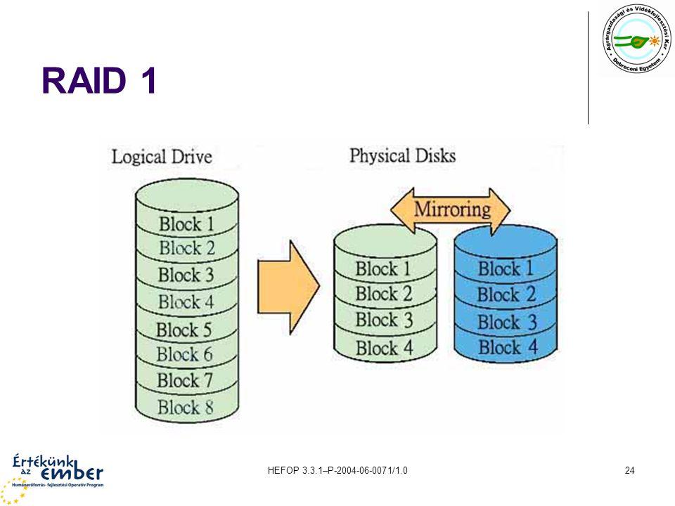 HEFOP 3.3.1–P-2004-06-0071/1.024 RAID 1