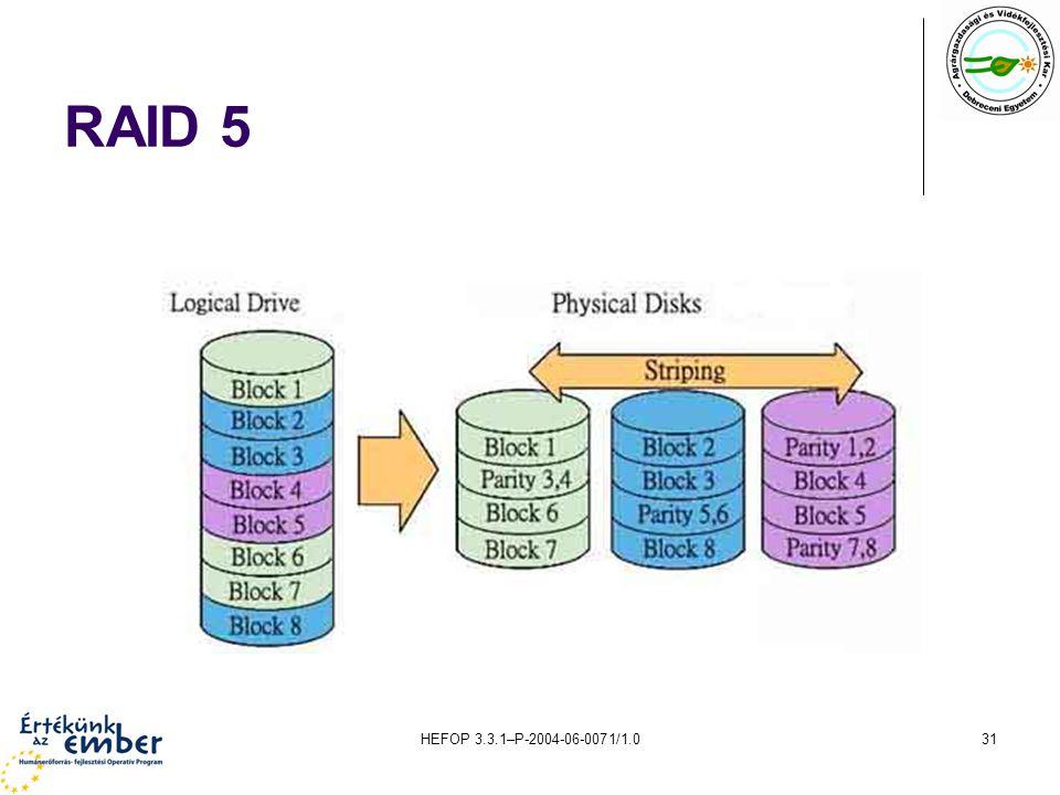 HEFOP 3.3.1–P-2004-06-0071/1.031 RAID 5