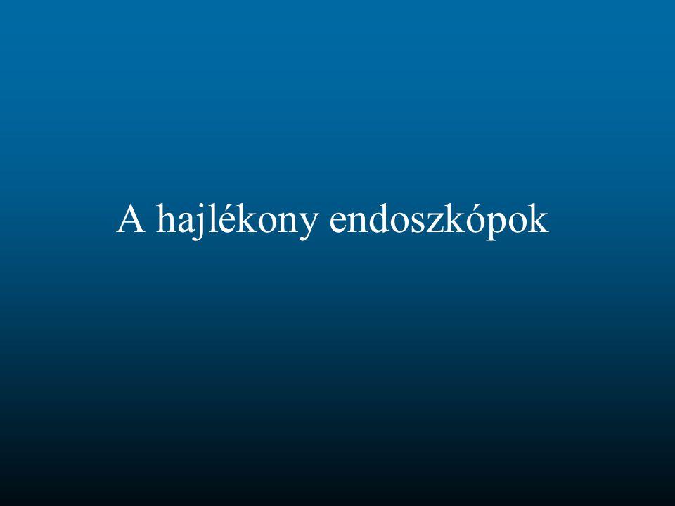 A hajlékony endoszkópok