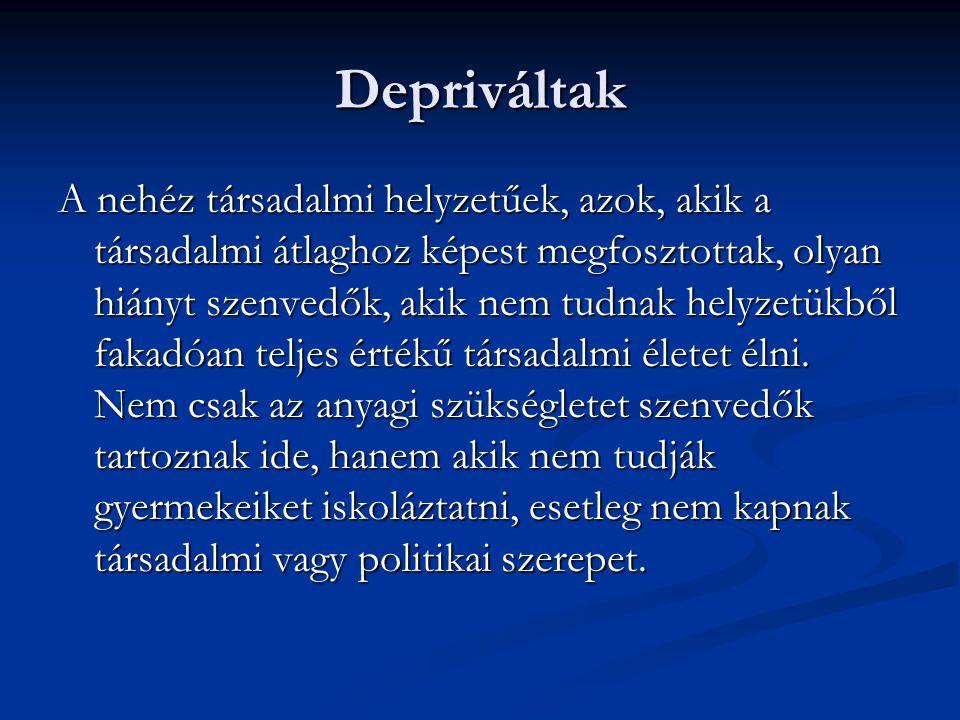 Rendszerváltás utáni évek TÁRKI Háztartási panel vizsgálat 1989-től létrejött egy többpártrendszerű, pluralista nyugati típusú parlamenti demokrácia és ennek intézményei.