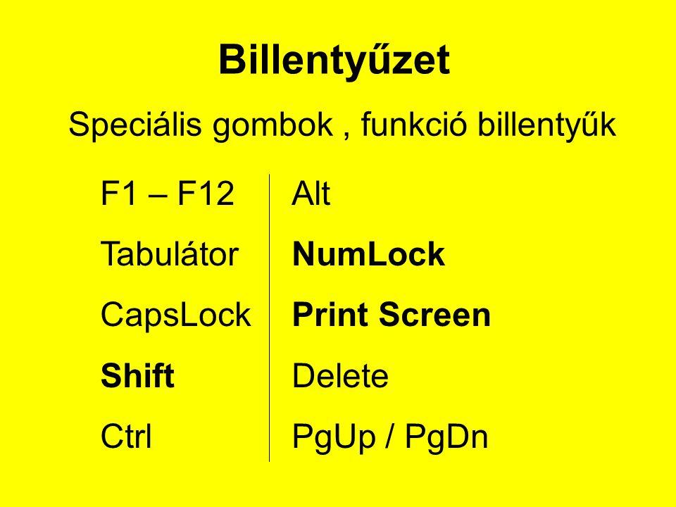 Speciális gombok, funkció billentyűk F1 – F12 Tabulátor CapsLock Shift Ctrl Alt NumLock Print Screen Delete PgUp / PgDn