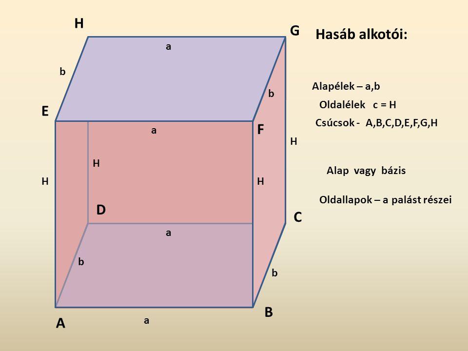 Alapélek – a,b Oldalélek c = H Alap vagy bázis Oldallapok – a palást részei Hasáb alkotói: A a a a a b b b b H H H H B C D E F G H Csúcsok - A,B,C,D,E