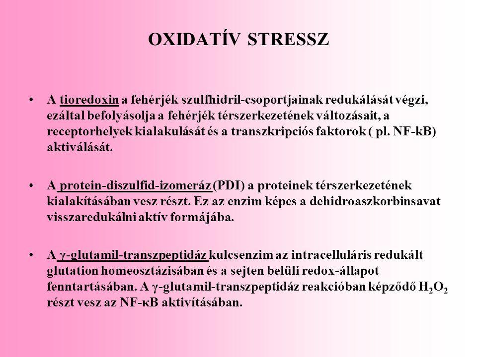 OXIDATÍV STRESSZ A tioredoxin a fehérjék szulfhidril-csoportjainak redukálását végzi, ezáltal befolyásolja a fehérjék térszerkezetének változásait, a