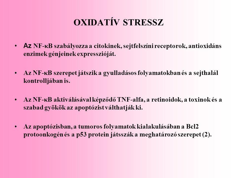 OXIDATÍV STRESSZ Az NF-κB szabályozza a citokinek, sejtfelszíni receptorok, antioxidáns enzimek génjeinek expresszióját. Az NF-κB szerepet játszik a g