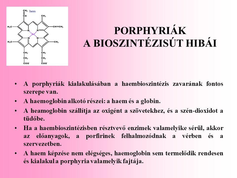 PORPHYRIÁK A BIOSZINTÉZISÚT HIBÁI A porphyriák kialakulásában a haembioszintézis zavarának fontos szerepe van. A haemoglobin alkotó részei: a haem és