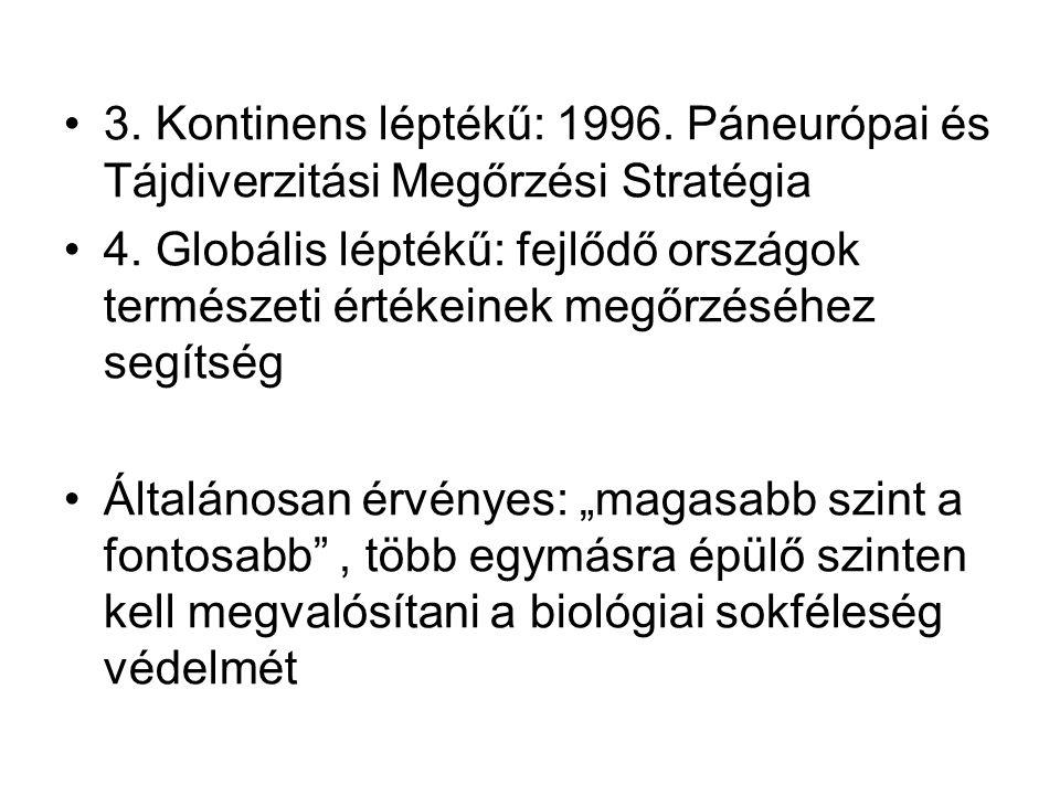3. Kontinens léptékű: 1996. Páneurópai és Tájdiverzitási Megőrzési Stratégia 4. Globális léptékű: fejlődő országok természeti értékeinek megőrzéséhez