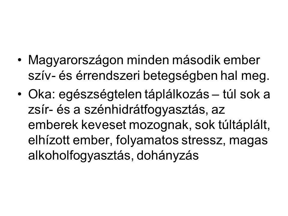 Magyarországon minden második ember szív- és érrendszeri betegségben hal meg. Oka: egészségtelen táplálkozás – túl sok a zsír- és a szénhidrátfogyaszt