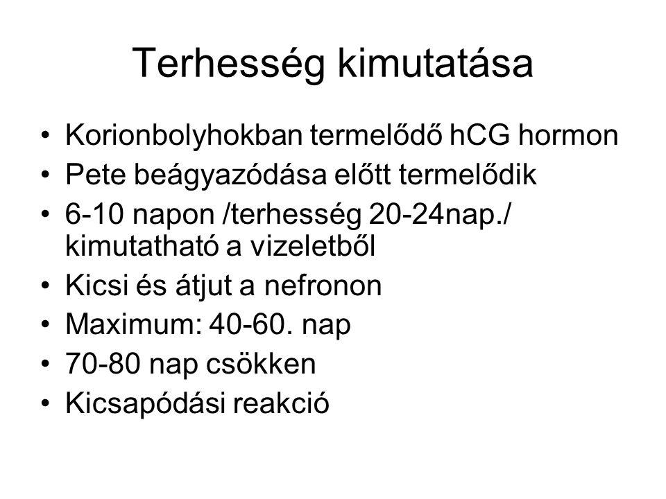 Terhesség kimutatása Korionbolyhokban termelődő hCG hormon Pete beágyazódása előtt termelődik 6-10 napon /terhesség 20-24nap./ kimutatható a vizeletbő