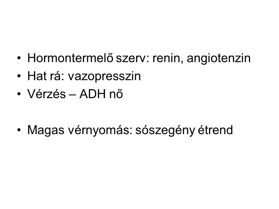 Hormontermelő szerv: renin, angiotenzin Hat rá: vazopresszin Vérzés – ADH nő Magas vérnyomás: sószegény étrend