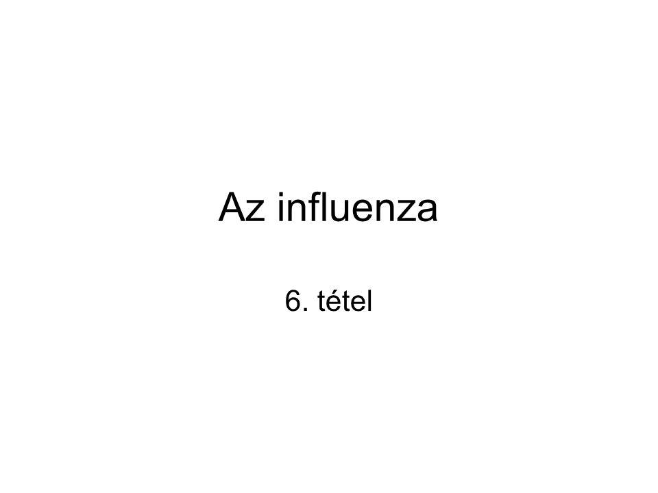 Az influenza 6. tétel
