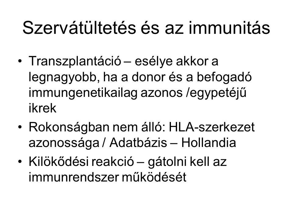 Szervátültetés és az immunitás Transzplantáció – esélye akkor a legnagyobb, ha a donor és a befogadó immungenetikailag azonos /egypetéjű ikrek Rokonsá