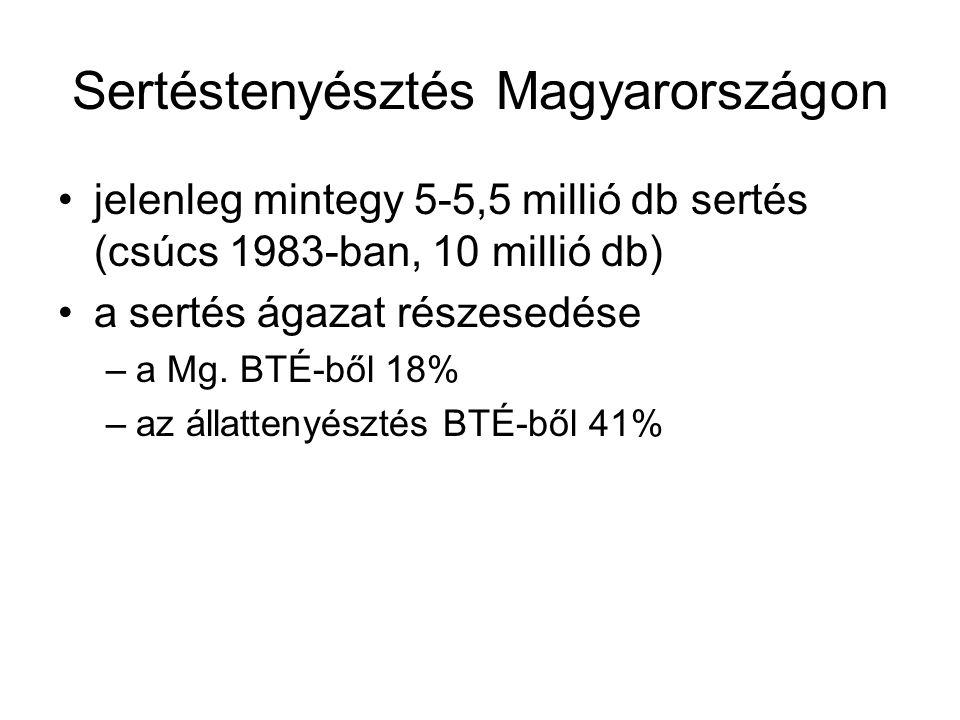 Sertéstenyésztés Magyarországon jelenleg mintegy 5-5,5 millió db sertés (csúcs 1983-ban, 10 millió db) a sertés ágazat részesedése –a Mg.