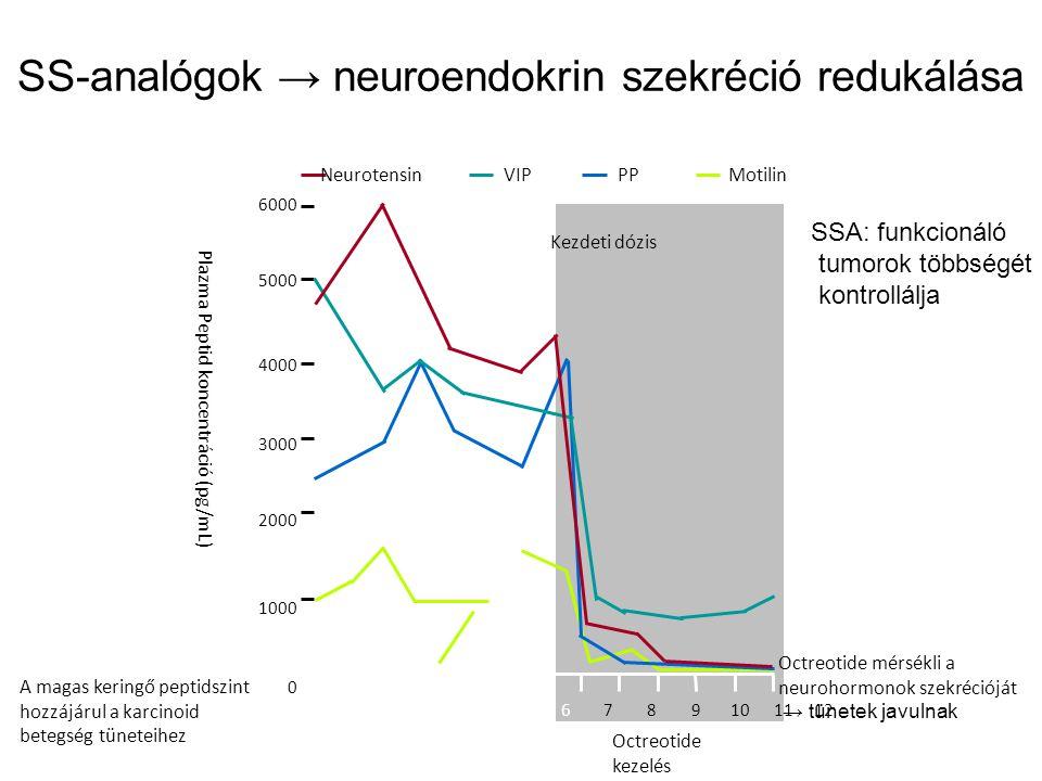 SS-analógok → neuroendokrin szekréció redukálása 123456789101112 Nap 6000 5000 4000 3000 2000 1000 0 Kezdeti dózis Neurotensin VIP PPMotilin Kezelés előttOctreotide kezelés Pla z ma Peptid koncentráció (pg/mL) A magas keringő peptidszint hozzájárul a karcinoid betegség tüneteihez Octreotide mérsékli a neurohormonok szekrécióját → tünetek javulnak SSA: funkcionáló tumorok többségét kontrollálja