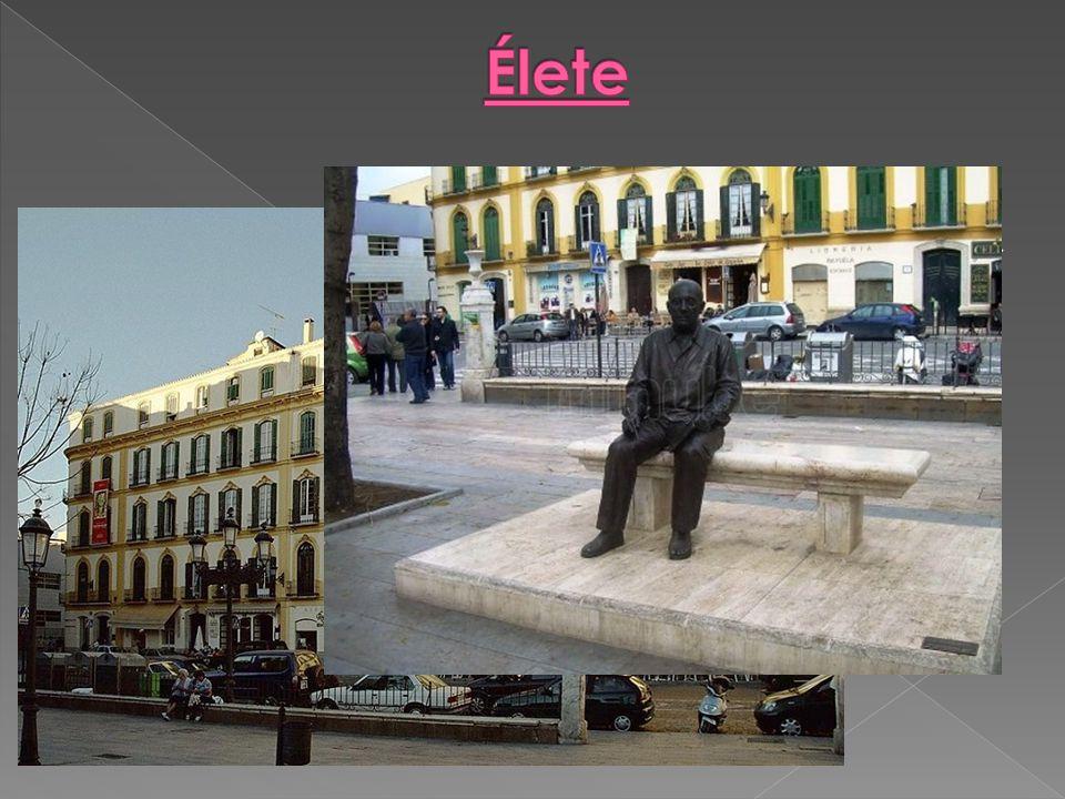  1881 október 25-én megszületett a spanyolországi Malagában. Apja, José Ruiz Blasco festő és művészetpedagógus és andalúziai anyja Dona Maria Picasso