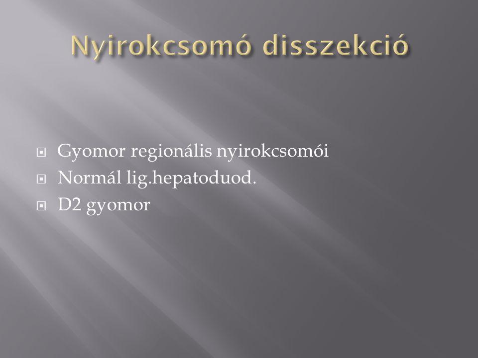  Gyomor regionális nyirokcsomói  Normál lig.hepatoduod.  D2 gyomor