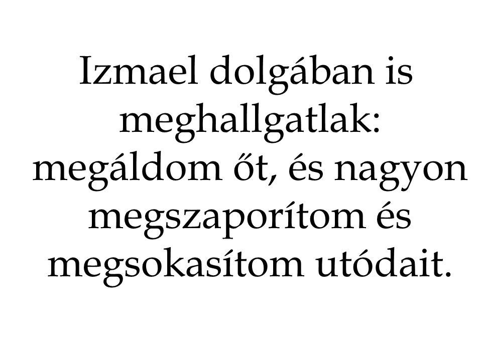 Izmael dolgában is meghallgatlak: megáldom őt, és nagyon megszaporítom és megsokasítom utódait.