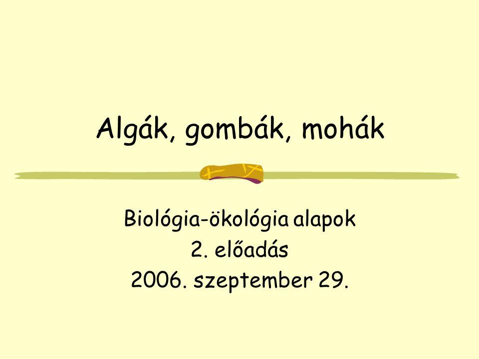 Algák, gombák, mohák Biológia-ökológia alapok 2. előadás 2006. szeptember 29.