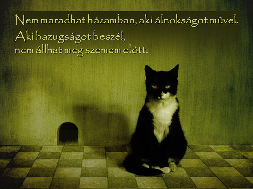 Nem maradhat házamban, aki álnokságot mûvel. Aki hazugságot beszél, nem állhat meg szemem elôtt.