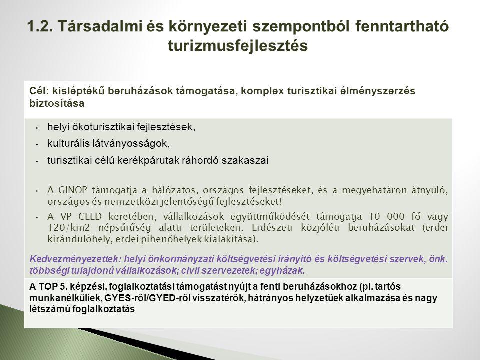 Cél: a Szociális törvényben és Gyermekvédelmi törvényben nevesített szolgáltatások elérhetővé tétele a szolgáltatáshiányos településeken Nappali szociális ellátások (idősek, fogyatékkal élők, hajléktalan, szenvedélybeteg és pszichiátriai beteg személyek) fejlesztése Családsegítés, gyermekjóléti szolgálat minőségi fejlesztése, férőhelyek bővítése Kedvezményezettek: helyi önkormányzati költségvetési irányító és költségvetési szervek, önkormányzati többségi tulajdonú vállalkozások; civil szervezetek; egyházak; egyesületek; alapítványok; non-profit szervezetek A beruházási prioritás keretében megvalósuló intézkedések részeként az önkormányzati intézmények akadálymentesítése és családbarát funkciók elhelyezése, kialakítása is támogatható