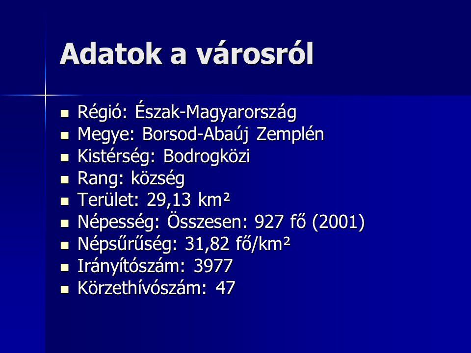 Adatok a városról Régió: Észak-Magyarország Régió: Észak-Magyarország Megye: Borsod-Abaúj Zemplén Megye: Borsod-Abaúj Zemplén Kistérség: Bodrogközi Kistérség: Bodrogközi Rang: község Rang: község Terület: 29,13 km² Terület: 29,13 km² Népesség: Összesen: 927 fő (2001) Népesség: Összesen: 927 fő (2001) Népsűrűség: 31,82 fő/km² Népsűrűség: 31,82 fő/km² Irányítószám: 3977 Irányítószám: 3977 Körzethívószám: 47 Körzethívószám: 47