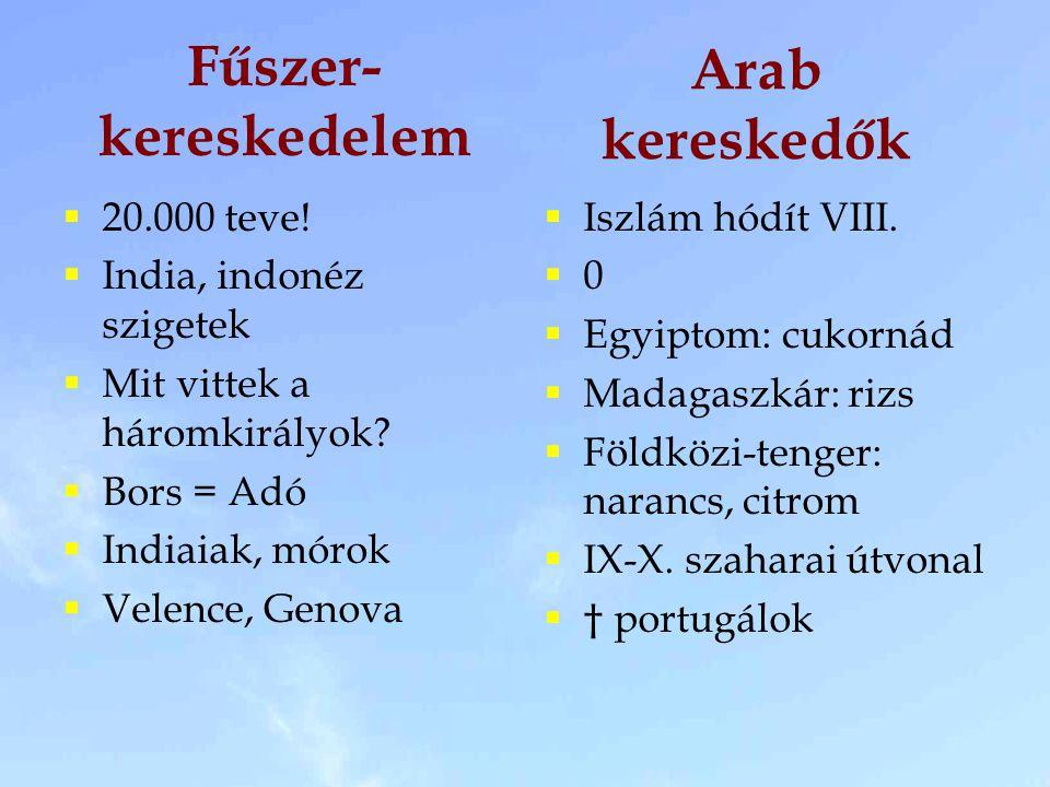 Fűszer- kereskedelem  20.000 teve!  India, indonéz szigetek  Mit vittek a háromkirályok?  Bors = Adó  Indiaiak, mórok  Velence, Genova  Iszlám