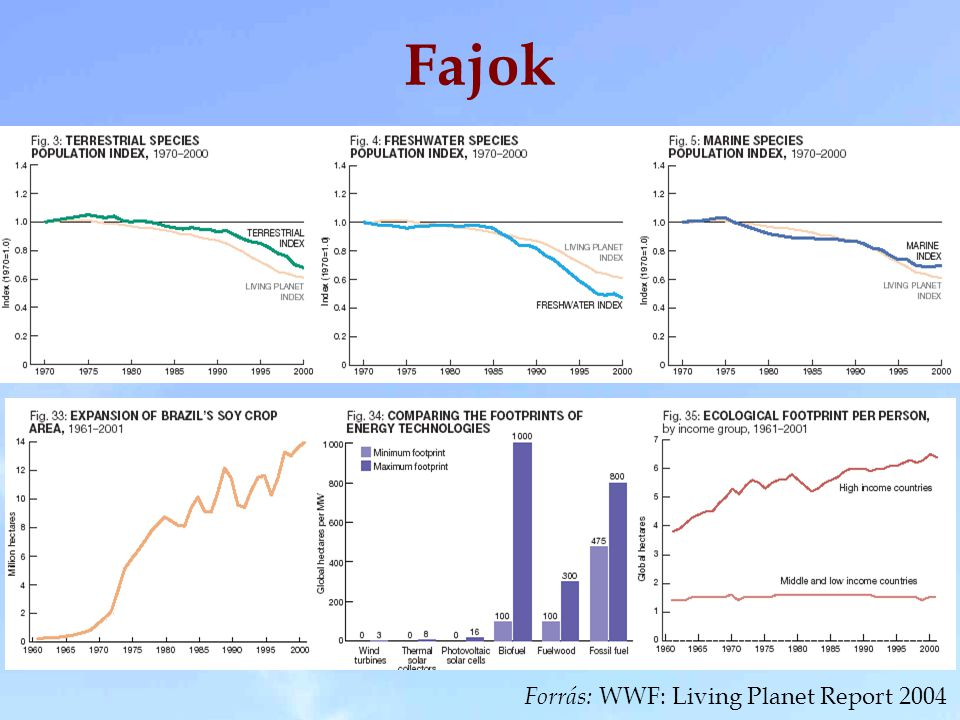 Forrás: WWF: Living Planet Report 2004 Fajok