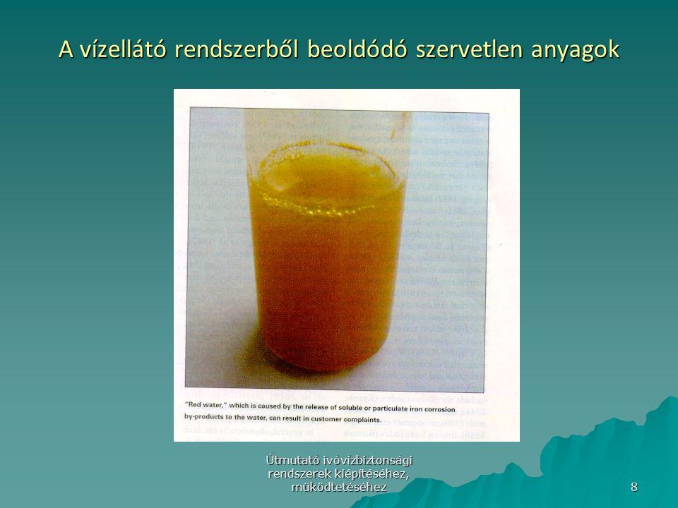 Útmutató ivóvízbiztonsági rendszerek kiépítéséhez, működtetéséhez 9 Másodlagos mikrobiális biofilm-modell/2 Costerton, 1995