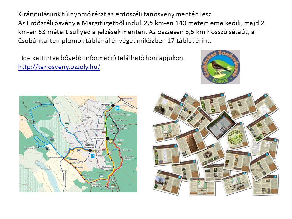 Kirándulásunk túlnyomó részt az erdőszéli tanösvény mentén lesz.