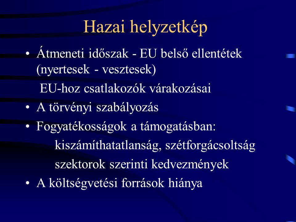 Hazai helyzetkép Átmeneti időszak - EU belső ellentétek (nyertesek - vesztesek) EU-hoz csatlakozók várakozásai A törvényi szabályozás Fogyatékosságok