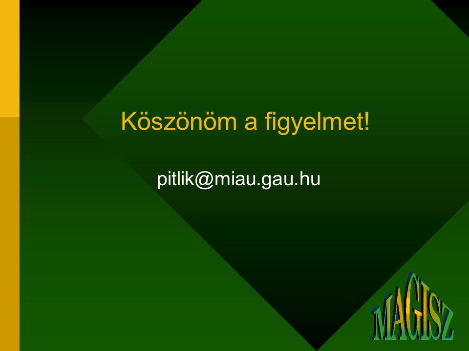 Köszönöm a figyelmet! pitlik@miau.gau.hu
