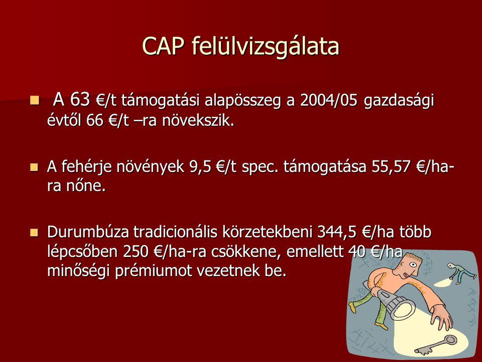 CAP felülvizsgálata A 63 €/t támogatási alapösszeg a 2004/05 gazdasági évtől 66 €/t –ra növekszik. A 63 €/t támogatási alapösszeg a 2004/05 gazdasági