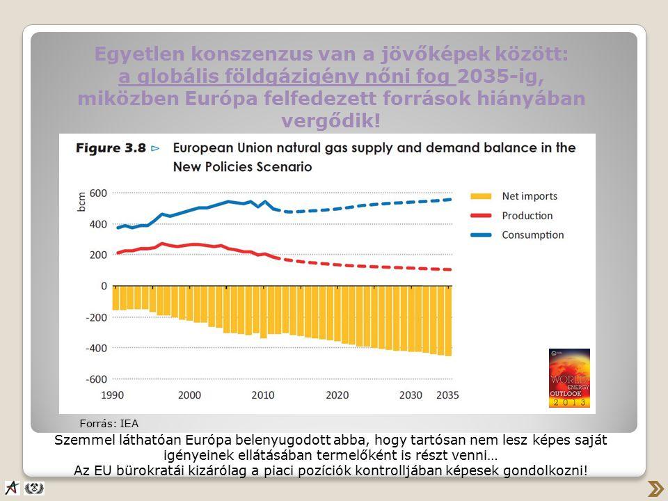 Egyetlen konszenzus van a jövőképek között: a globális földgázigény nőni fog 2035-ig, miközben Európa felfedezett források hiányában vergődik.
