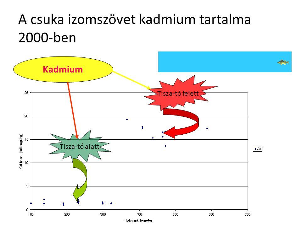 """Következtetések az üledékben mért eredmények alapján A tiszai üledék """"átlagos szennyezettsége"""" az európai preindusztriális szintet mutatja A nehézfém"""