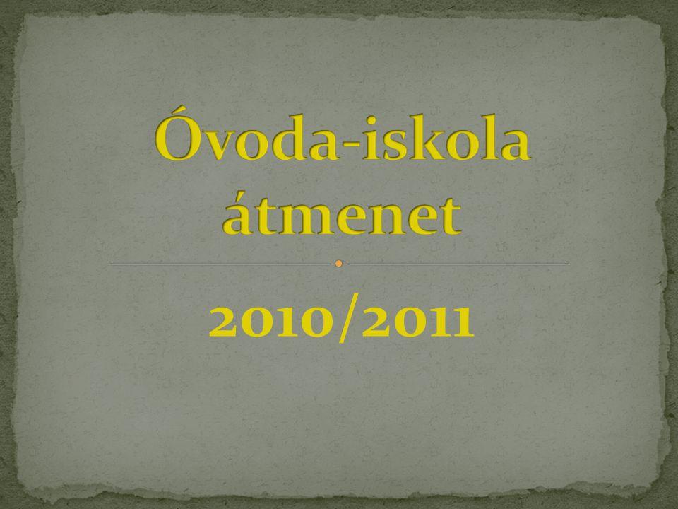 2010/2011