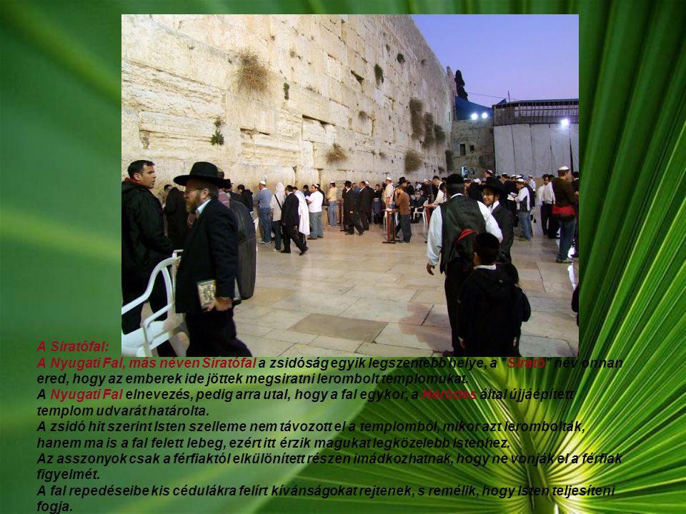 Dávid király sírja: Az egyik leglátogatottabb zsidó kegyhely Izraelben. A síremlék kőből van, egy hímzett takaró fedi. Itt mindig találkozunk imádkozó
