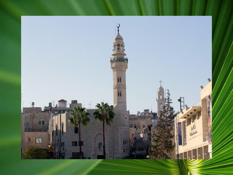 Betlehem: Betlehem Ciszjordániában, a megszállt területen fekszik, ezért csak külön engedéllyel lehet látogatni, és az NDK-s időket idéző, hatalmas fa