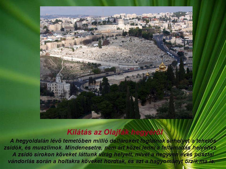 Jeruzsálem Az izraeliek, Jeruzsálemet tartják a fővárosuknak, de a határkérdések tisztázatlansága, és egyéb okok miatt a világ számára Tel Aviv a fővá