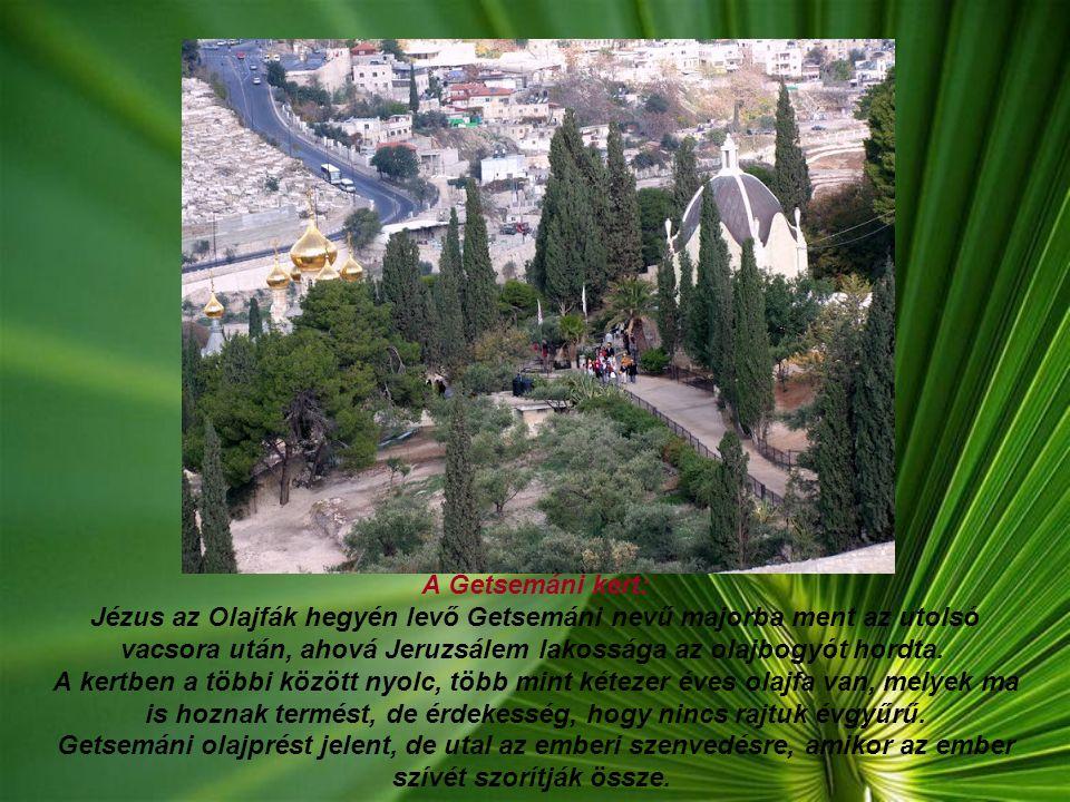 Kilátás az Óvárosra, az Olajfák hegyéről, előtérben, egy orosz ortodox templommal.