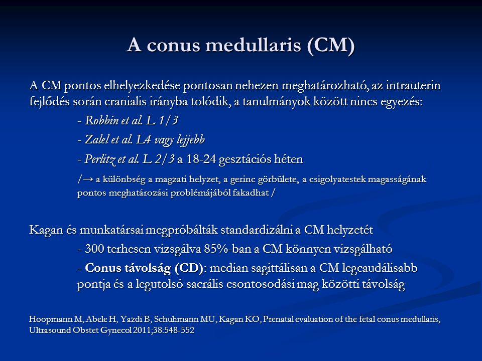A conus medullaris (CM) A CM pontos elhelyezkedése pontosan nehezen meghatározható, az intrauterin fejlődés során cranialis irányba tolódik, a tanulmányok között nincs egyezés: - Robbin et al.