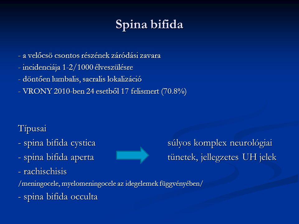 Spina bifida - a velőcsö csontos részének záródási zavara - incidenciája 1-2/1000 élveszülésre - döntően lumbalis, sacralis lokalizáció - VRONY 2010-ben 24 esetből 17 felismert (70.8%) Típusai - spina bifida cysticasúlyos komplex neurológiai - spina bifida apertatünetek, jellegzetes UH jelek - rachischisis /meningocele, myelomeningocele az idegelemek függvényében/ - spina bifida occulta