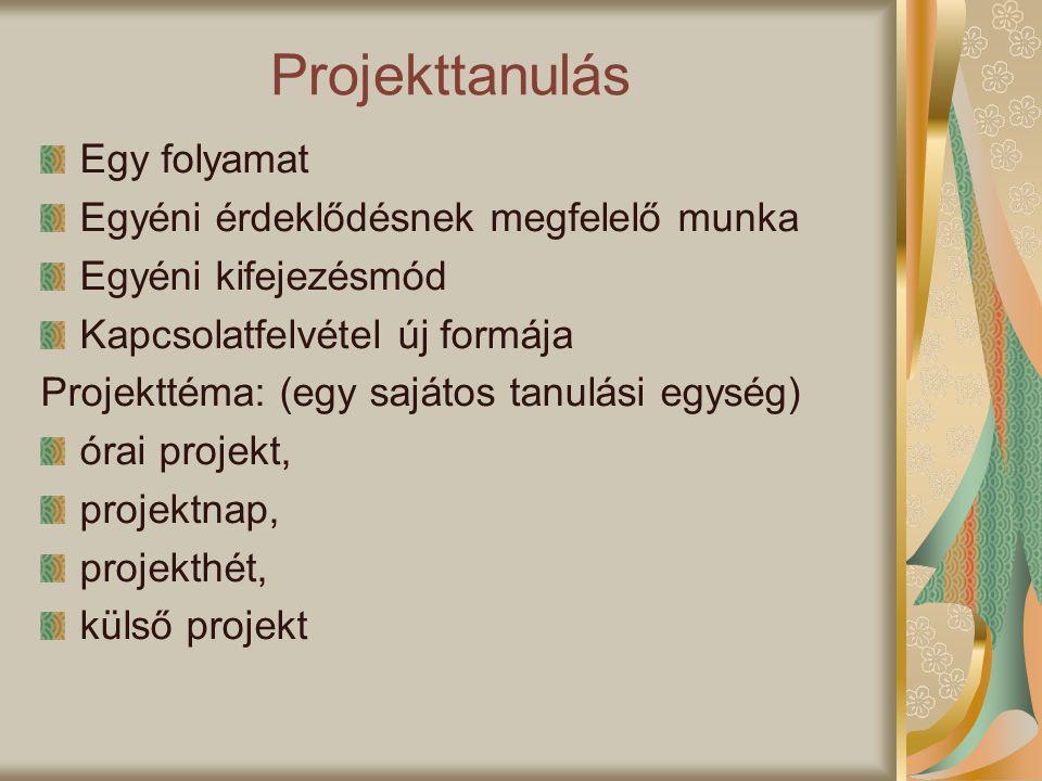Projekttanulás Egy folyamat Egyéni érdeklődésnek megfelelő munka Egyéni kifejezésmód Kapcsolatfelvétel új formája Projekttéma: (egy sajátos tanulási e