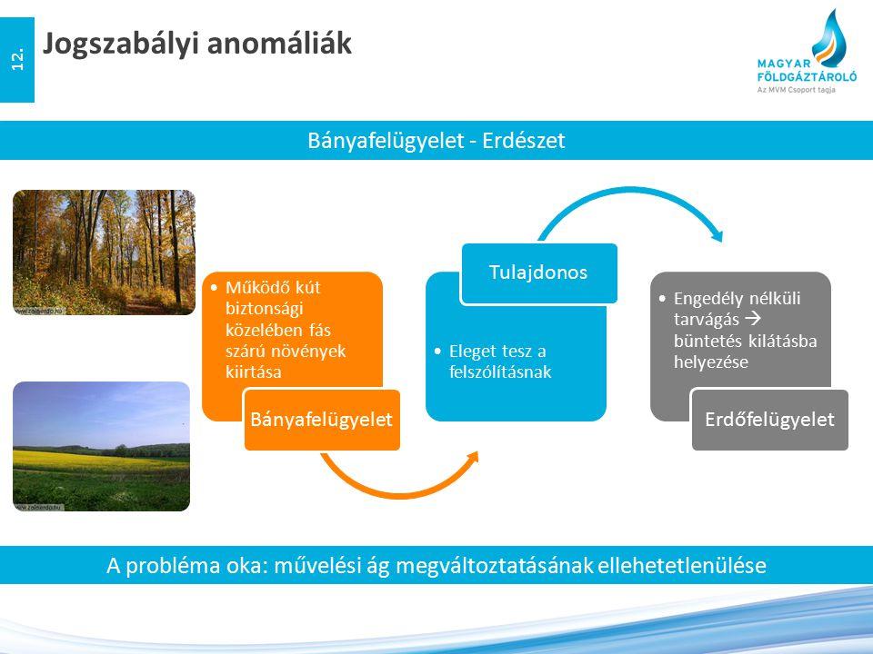Jogszabályi anomáliák 12. Bányafelügyelet - Erdészet Működő kút biztonsági közelében fás szárú növények kiirtása Bányafelügyelet Eleget tesz a felszól