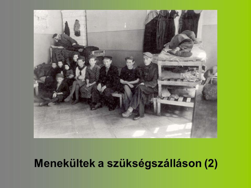 Menekültek a szükségszálláson (2)