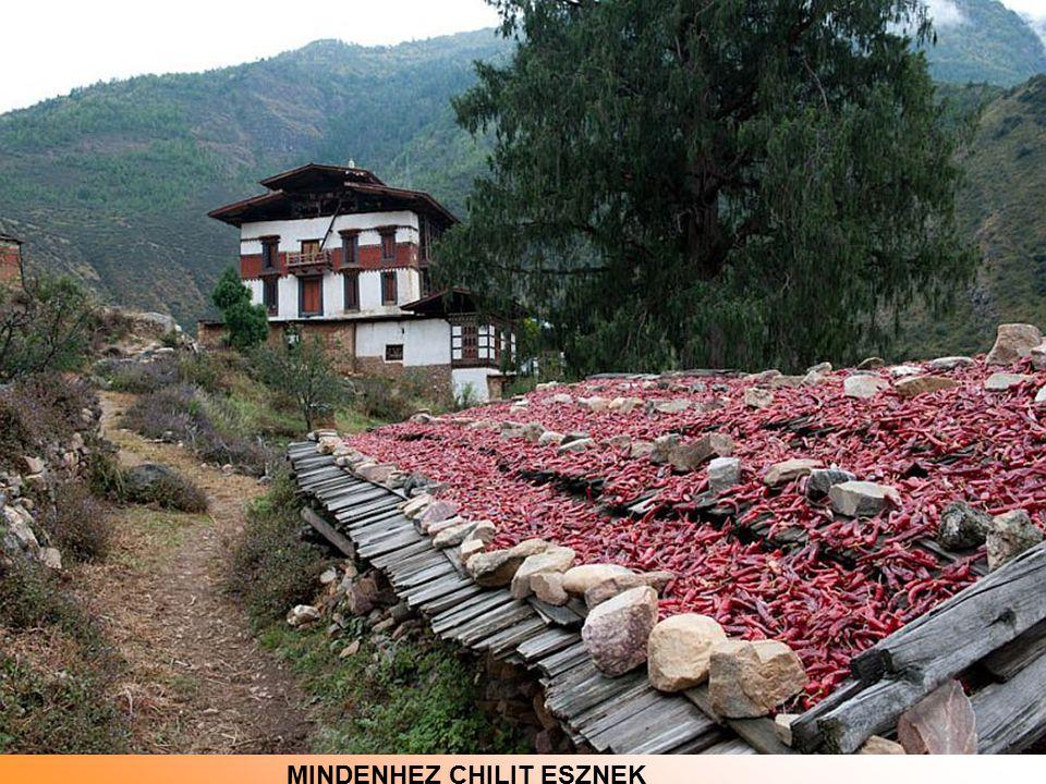 Punakha Dzong, a temple