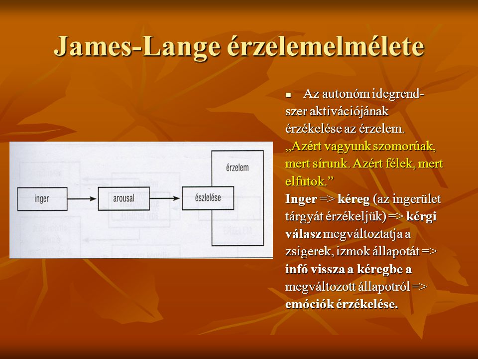 """James-Lange érzelemelmélete Az autonóm idegrend- Az autonóm idegrend- szer aktivációjának érzékelése az érzelem. """"Azért vagyunk szomorúak, mert sírunk"""