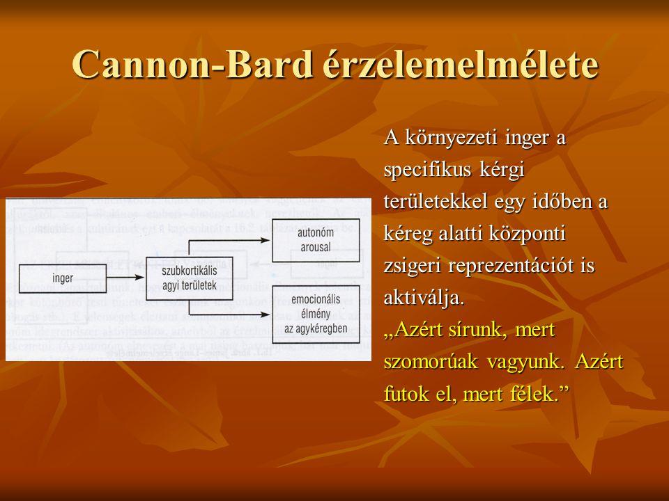 Cannon-Bard érzelemelmélete A környezeti inger a specifikus kérgi területekkel egy időben a kéreg alatti központi zsigeri reprezentációt is aktiválja.