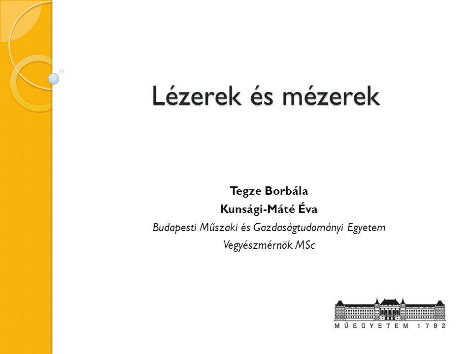 Lézerek és mézerek Tegze Borbála Kunsági-Máté Éva Budapesti Műszaki és Gazdaságtudományi Egyetem Vegyészmérnök MSc