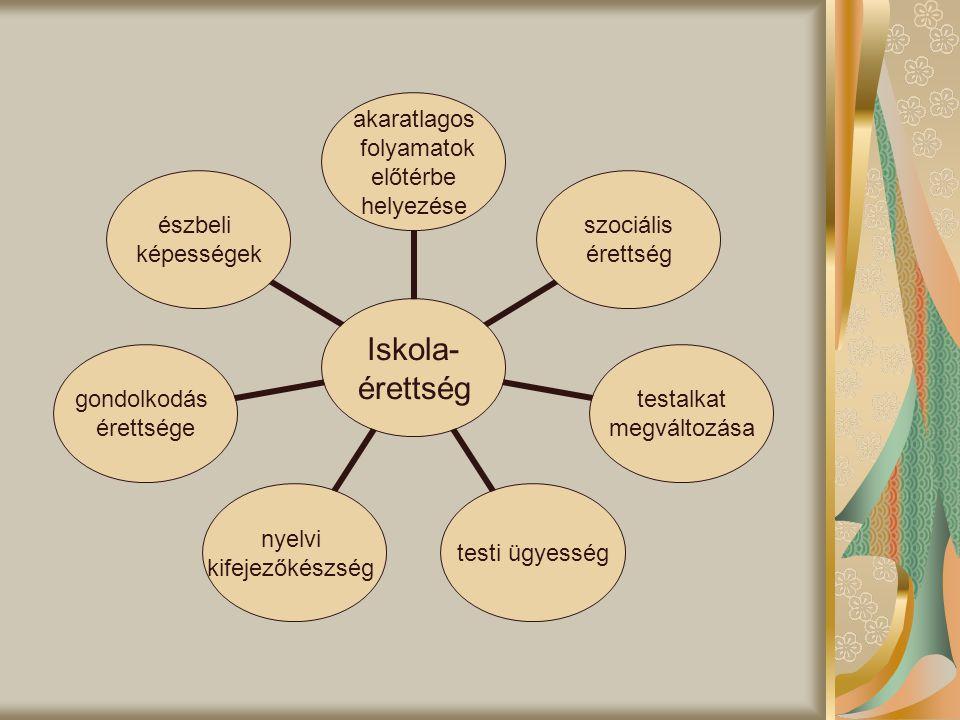 Iskola- érettség akaratlagos folyamatok előtérbe helyezése szociális érettség testalkat megváltozása testi ügyesség nyelvi kifejezőkészség gondolkodás érettsége észbeli képességek
