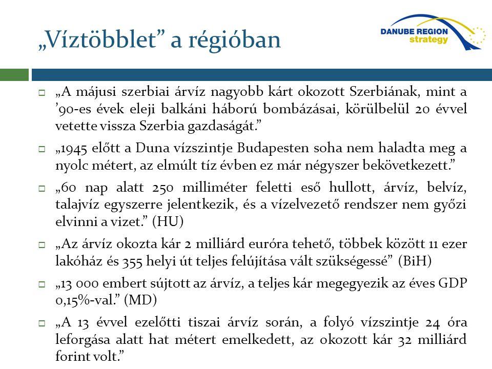 """""""Víztöbblet"""" a régióban  """"A májusi szerbiai árvíz nagyobb kárt okozott Szerbiának, mint a '90-es évek eleji balkáni háború bombázásai, körülbelül 20"""